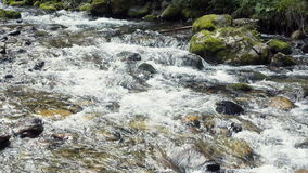 A River Flows Over Rocks Royalty Free Stock Photo