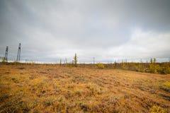 The river flows through the polar tundra. Royalty Free Stock Photo