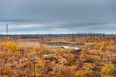 The river flows through the polar tundra. Royalty Free Stock Photos