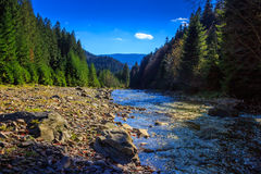 River flows by rocky shore near the autumn mountain forest Stock Photo