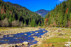 River flows by rocky shore near the autumn mountain forest Royalty Free Stock Images