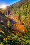 River flows by rocky shore near the autumn mountain forest Stock Photography