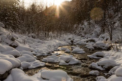 River flows at sunset in winter in drifts in forest Stock Photography