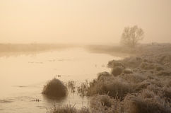 River in fog Royalty Free Stock Photo