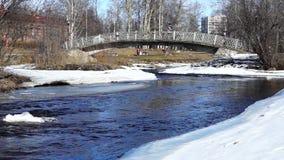 River foot bridge in spring stock video