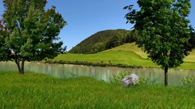 The river at the foot of the mountains, Transcarpathia. River Uzh in Transcarpathia, green grass, on the shore of trees, blue sky, summer Stock Image