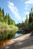 River Forest. Russia. Arkhangelsk Region. River Syuzma Stock Photo