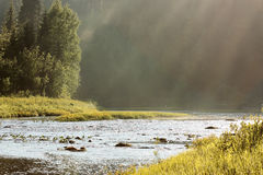River in forest. In the sun. Russia. Arkhangelsk Region. River Syuzma Stock Images