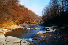 River in the forest. Landscape of a Carpatian mountains river in the autumn forest Stock Photo
