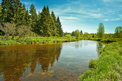 River and forest Royalty Free Stock Image