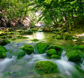River in forest. River in motion with long exposure effect through a canyon forest in summer Stock Images