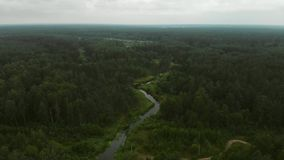 River in the forest. Aerial footage of small river in european forest shot from drone in summer cloudy day