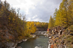 River and Forest in autumn Royalty Free Stock Photo