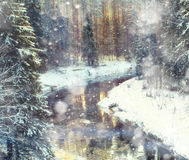 River Forest Christmas Royalty Free Stock Photo