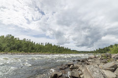 River with Forest and Cloudy Sky Stock Photography