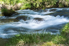 River in the forest of Devero Alp Stock Images