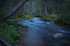 River forest dusk exposure Stock Photography
