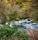 River in forest. Fast river in Fontaine-de-Vaucluse, France Stock Images