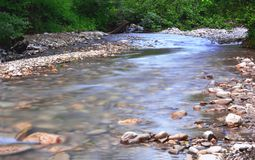 River in forest Royalty Free Stock Images