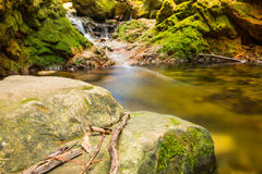 River in the forest. River flowing on the rocks in the green forrest during autumn Stock Photo