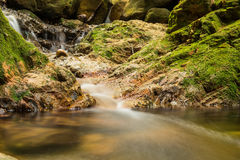 River in the forest. River flowing on the rocks in the green forrest during autumn Royalty Free Stock Images