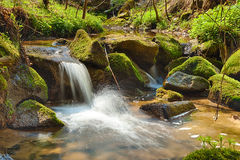 The river in the forest - HDR Royalty Free Stock Image