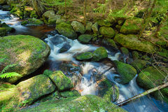 River in the forest - HDR Royalty Free Stock Image