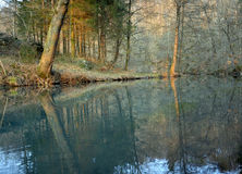 River and forest. Lahinja river running through the woods Royalty Free Stock Photos