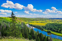 River and forest landscape Royalty Free Stock Images