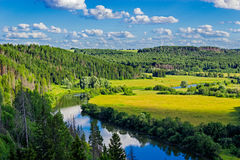 River and forest landscape Stock Images