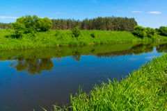River in the forest landscape Stock Photography