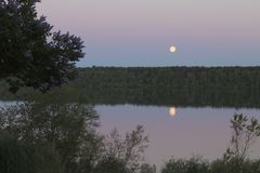 River, forest and moon. Beautiful calm nature in summer time before dawn, trees, river, forest and moon in the sky royalty free stock image