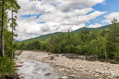 River through forest near the White Mountains, New Hampshire Stock Image