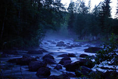 River in forest. A river in the forest at night Stock Photo