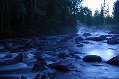 River in forest. A river in the forest at night Royalty Free Stock Image