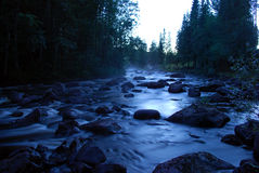 River in forest. A river in the forest at night Royalty Free Stock Photo