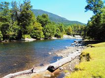 River and forest in Patagonia Argentina stock photography