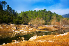 River with forest riverside in autumn day.  Muga. Catalan Pyrenees. Spain Royalty Free Stock Photo