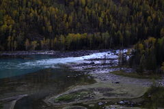 River beside forest Royalty Free Stock Photography