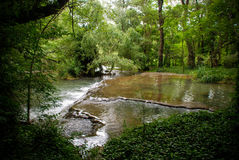 River, forest. View of river Piedra, Zaragoza, Spain Royalty Free Stock Images