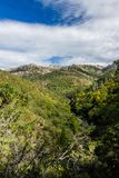 River in the forest. View of a valley in the National Park of Peneda-Geres in Northern Portugal stock photography