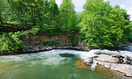 River in the forest. Whirlpool in the ukrainian river Royalty Free Stock Images