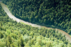 River in forested canyon. High angle view of river in forested canyon, Dunajec, Three Crowns, Pieniny, Poland Stock Photo