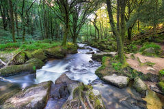 The River Fowey in Cornwall Stock Photos