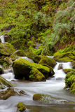 River in the Fragas do Eume Royalty Free Stock Photo