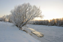 The river freezes. Royalty Free Stock Photography