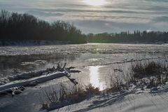 River freezing in sunny day Stock Image
