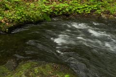 A river of fresh water among the rocks. Fresh aqua fast flow in the stones. A forest river with clean cold water. Fresh spring i Royalty Free Stock Photos