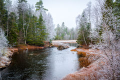 River with frosty trees around Royalty Free Stock Photography