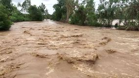 River in full flood. Muddy water flows down the mountain down the river stock video